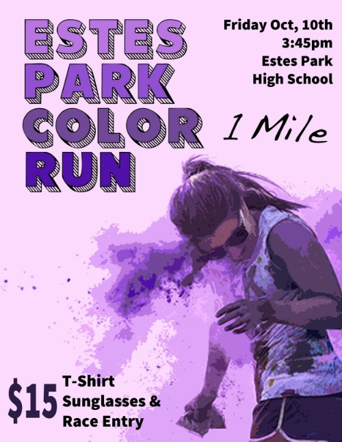 Color Run Poster 2014.jpg