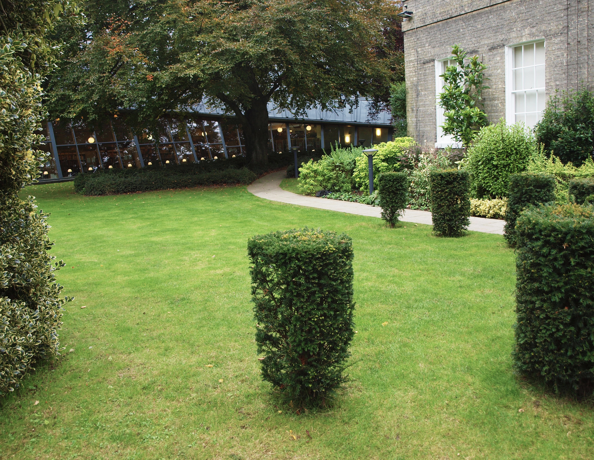 Circular trimmed trees