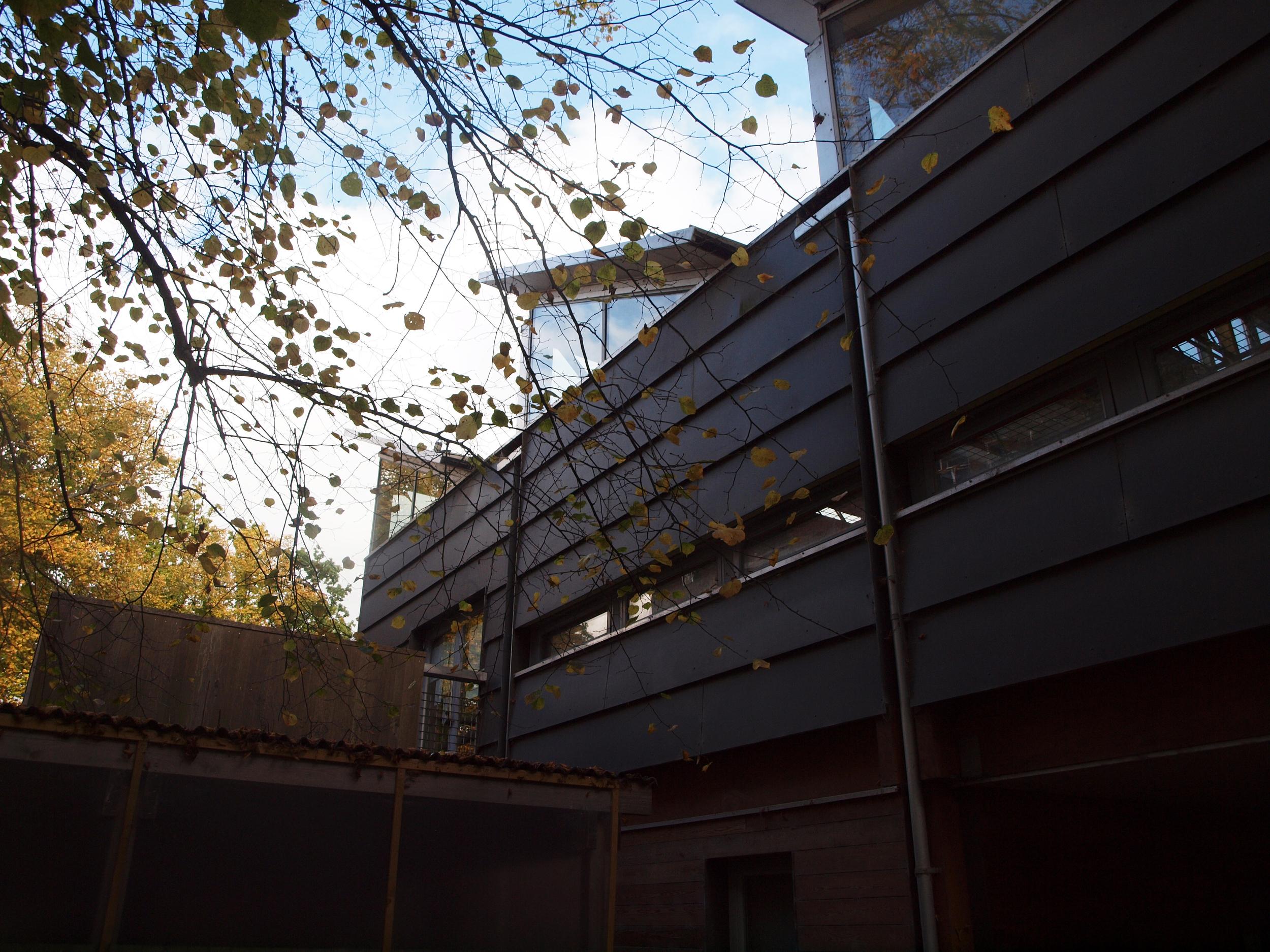 Cambridge Department of Architecture