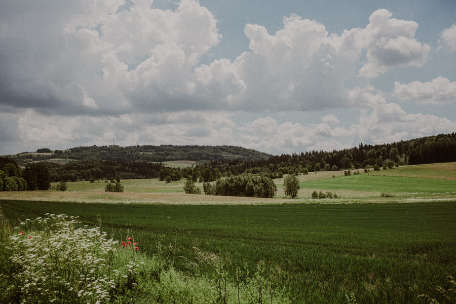 Adriana-Przemek-2.jpg