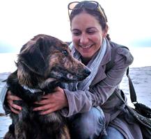 Schäferhund Husky Golden Retriever Mix Jack