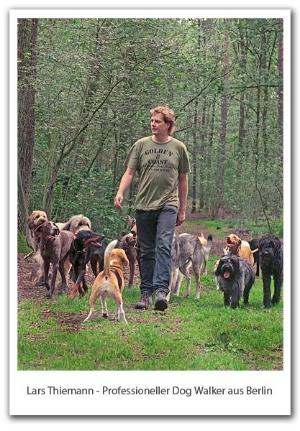 Lars Thiemann Dog Walker