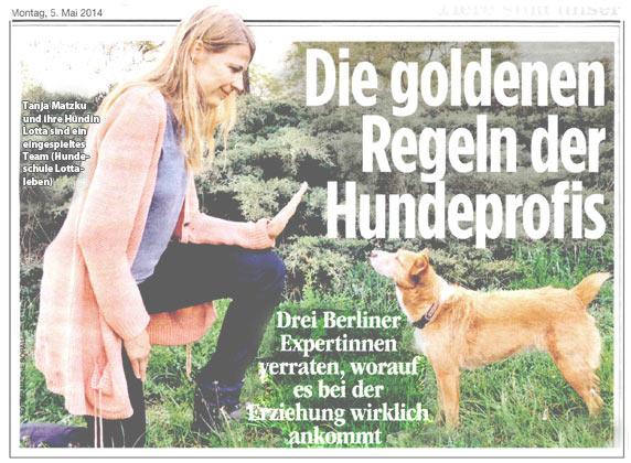Goldene Regeln Hundeprofi