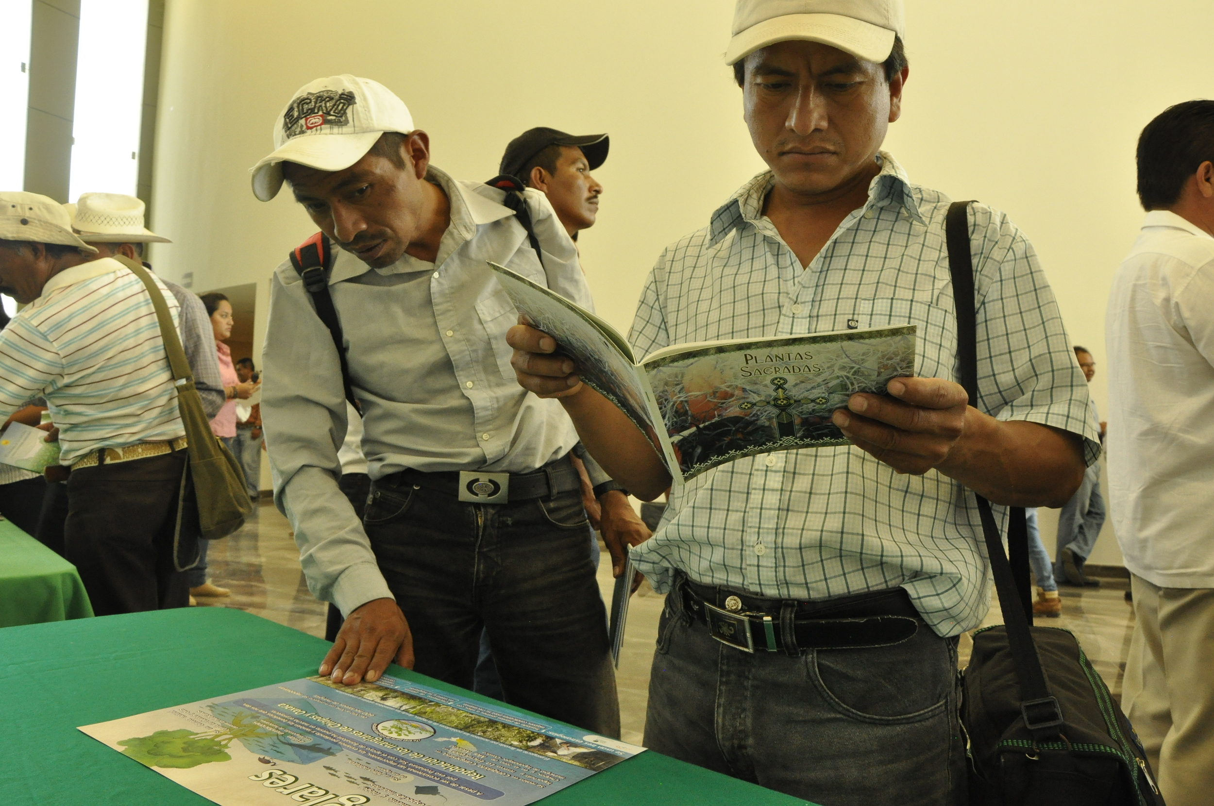 Participants of the Forestry Congress of Chiapas.
