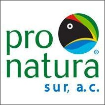 STA partner: Pronatura Sur