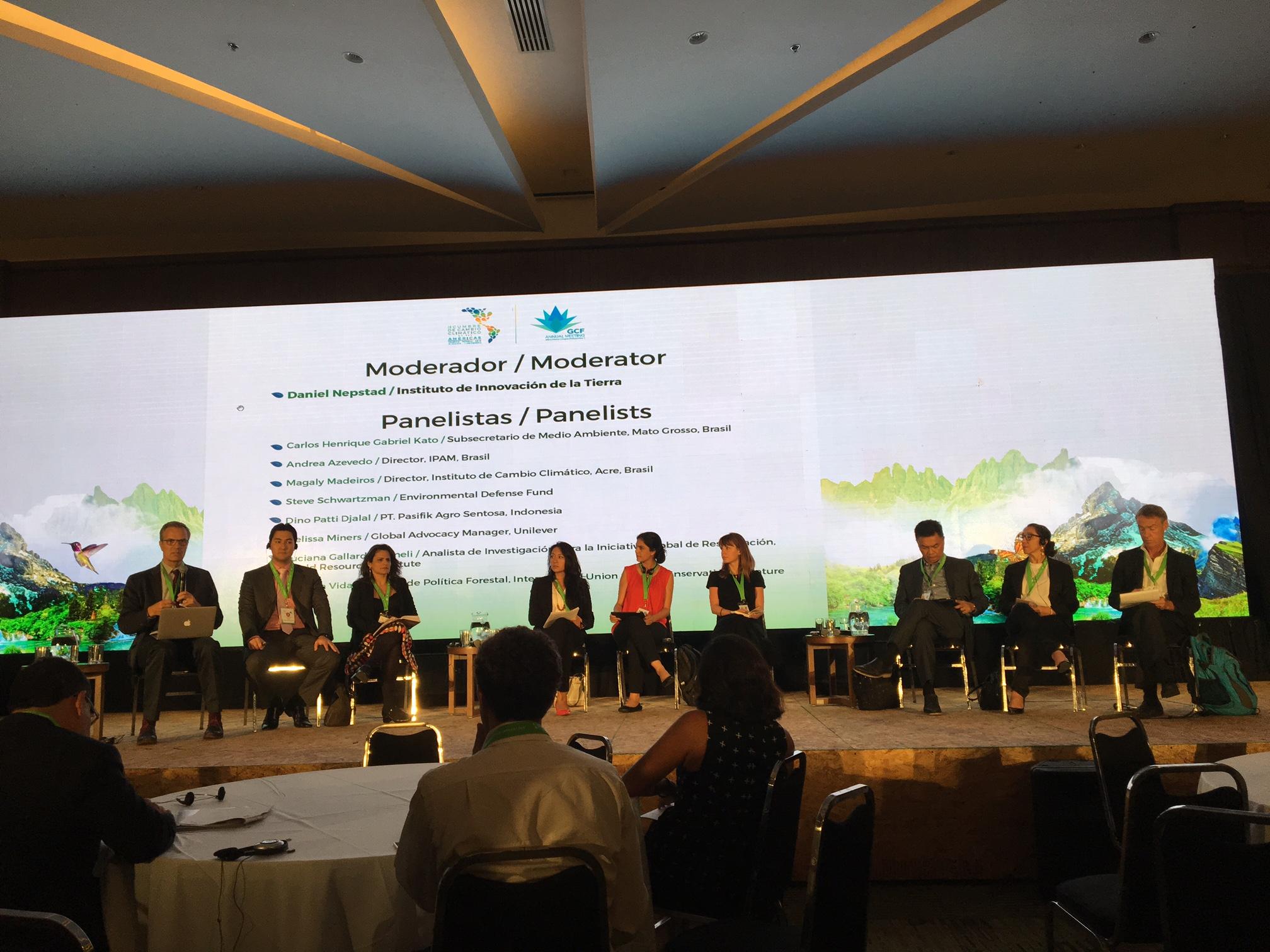 Panel on sub-national innovation