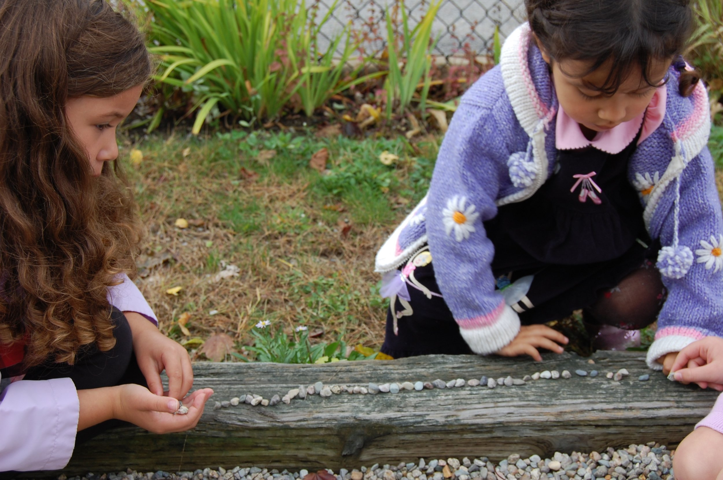 At Bridgeview Montessori School, we learn to dig deep.   Learn More