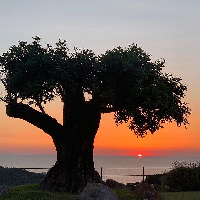 ISCHIA #tequila #sunset #italy @mezzatorre #summer  #love #happiness #sunset