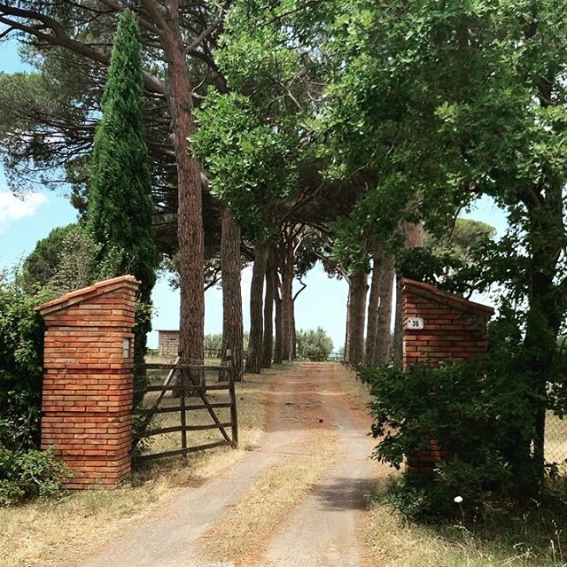 Tenure di Paternostro - #destination #fabulous enter the world of @oliviamariotti @tenutadipaternostro loving her #villa #wellness #retreat in @vetralla. Infused with #chic finds from her travels all over the world met with her #italian heritage. Best way to end my #italian #adventure.