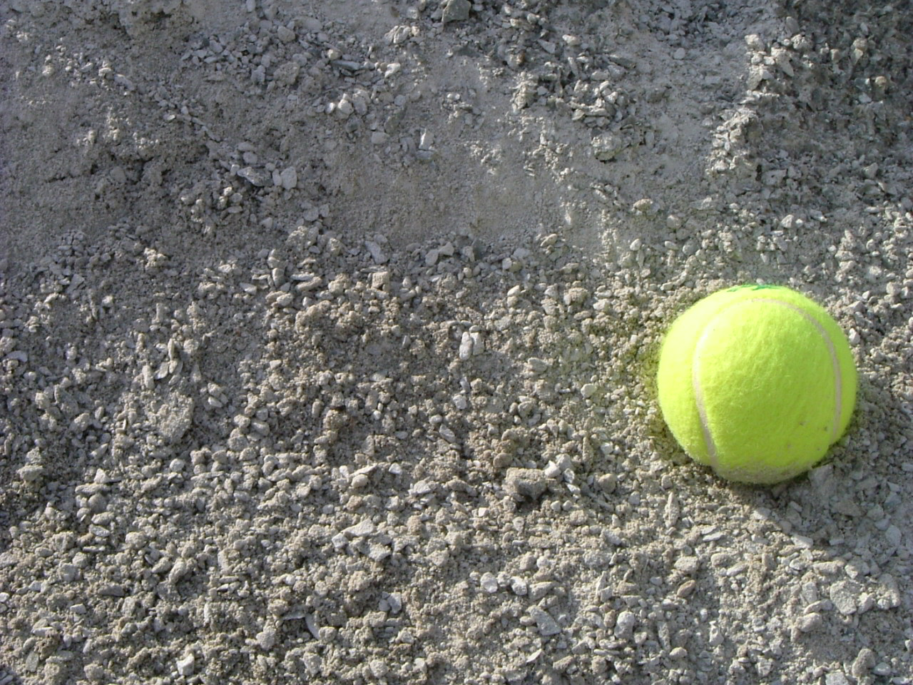 Use this tennis ball in the picture to gain a perspective on the size.
