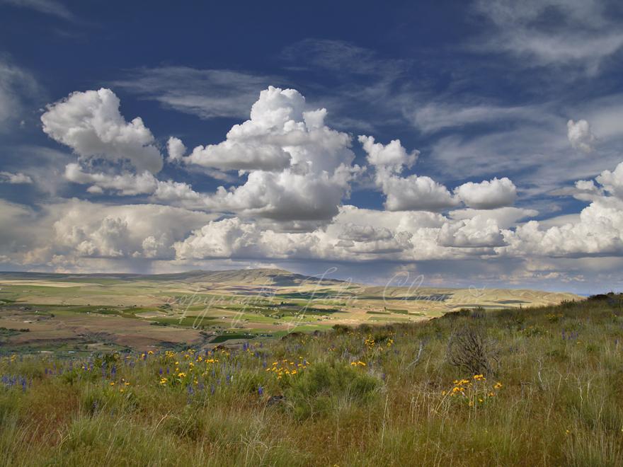 Spring Clouds Rattlesnake Mountain