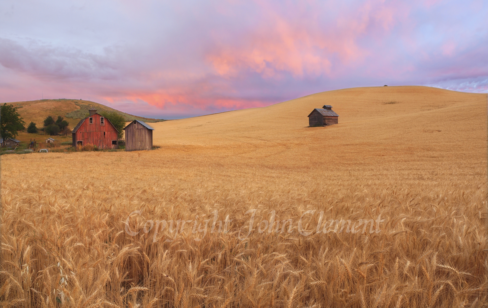 Morning on the Palouse