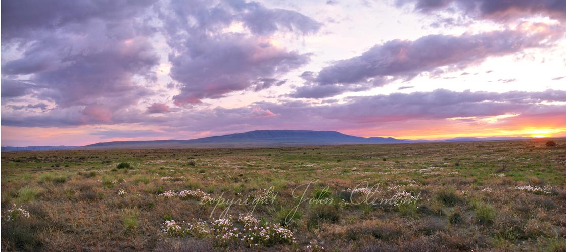 Spring Twilight Panorama