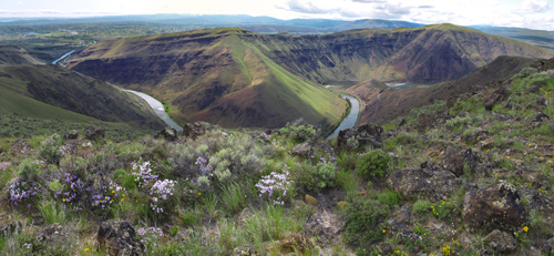 Yakima River Canyon Spring 2