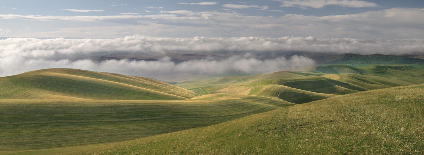 Touchet Valley XIII