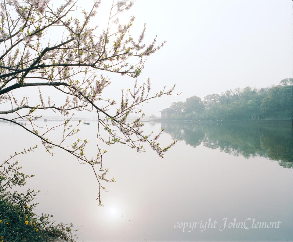 Hangzchou Spring