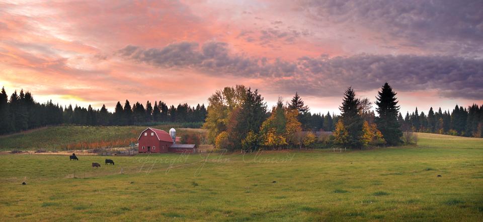 Old Farm Sunrise