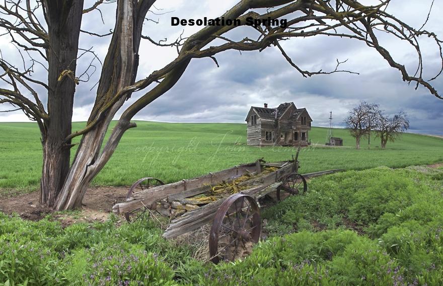 Spring Desolation II