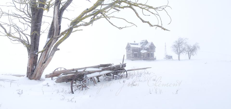Desolation Winter