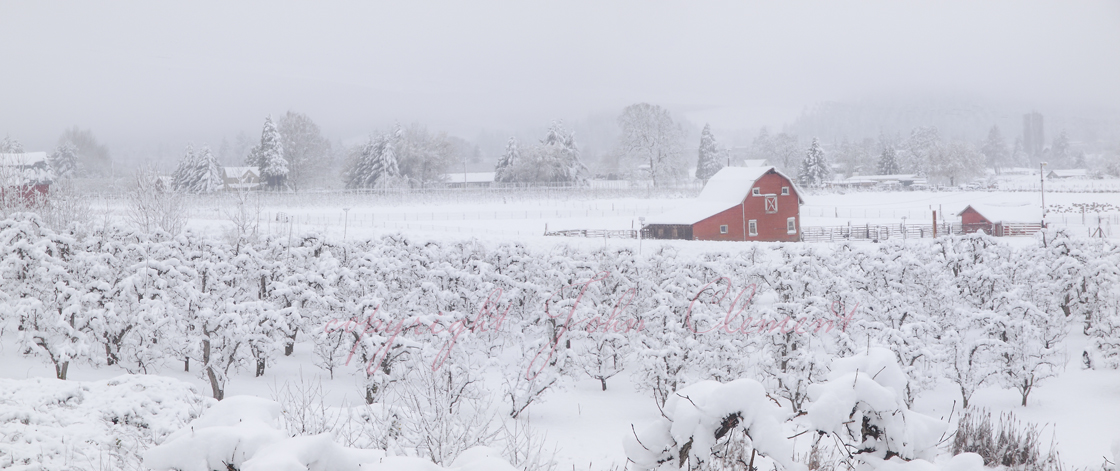 Winter Hood River Valley