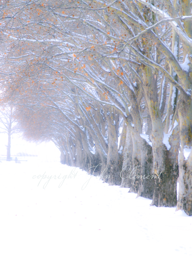 Battelle Blvd. Winter II