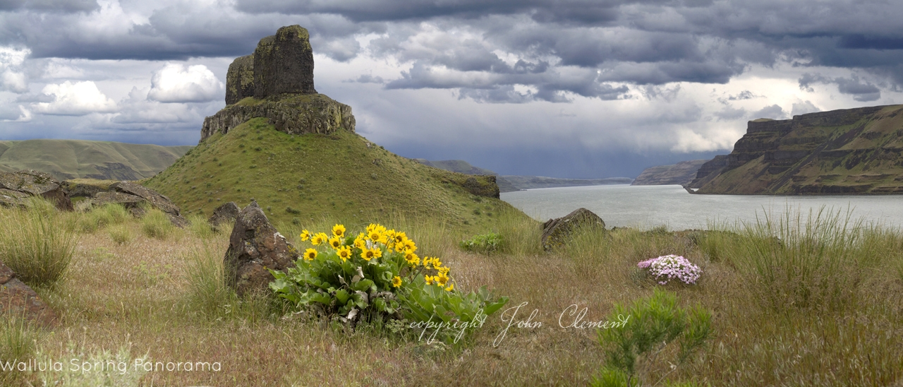 wallula spring panorama.jpg