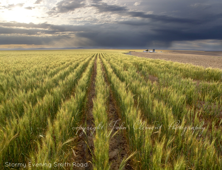 stormy evening smith rd copy.jpg