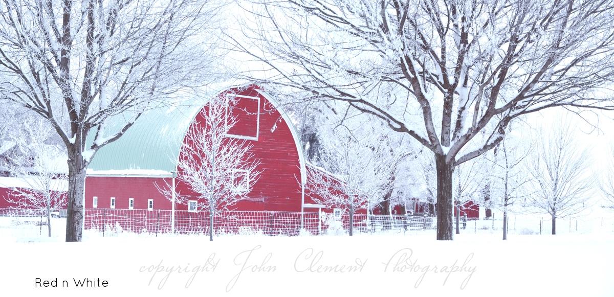 red white.jpg