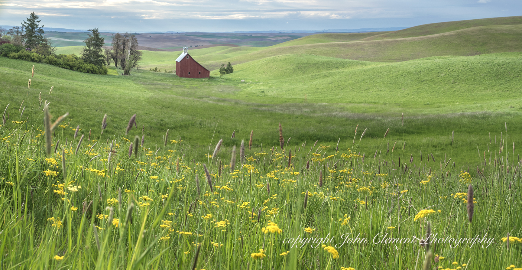 Palouse Country Barn-19