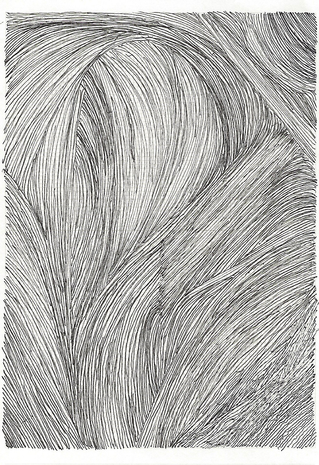Drawing 12 1.jpg