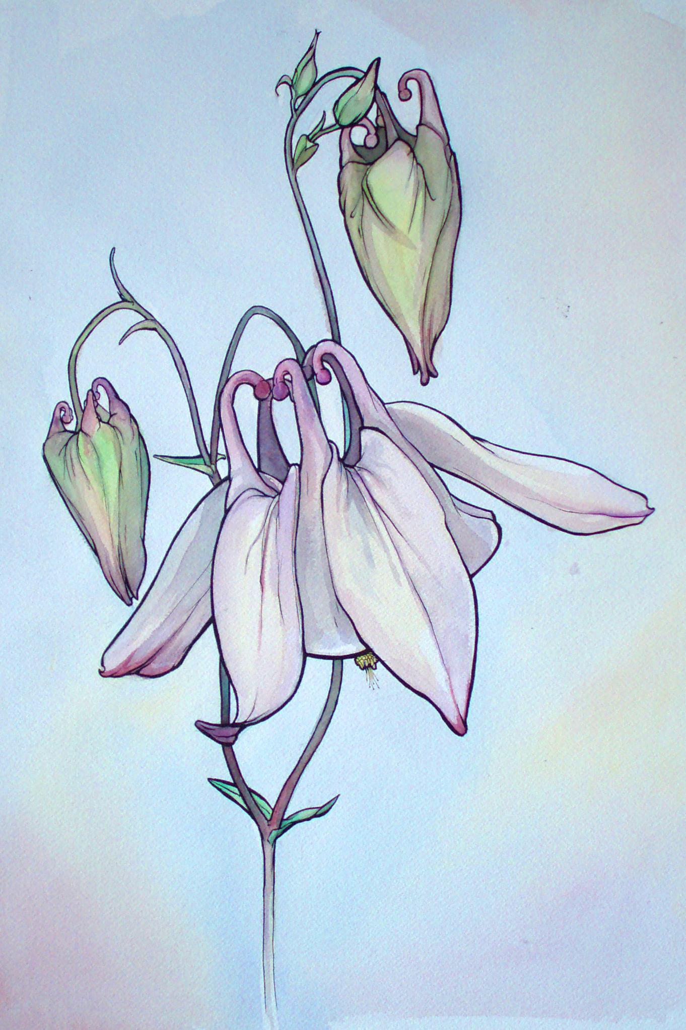 Alien Flowers (sold)