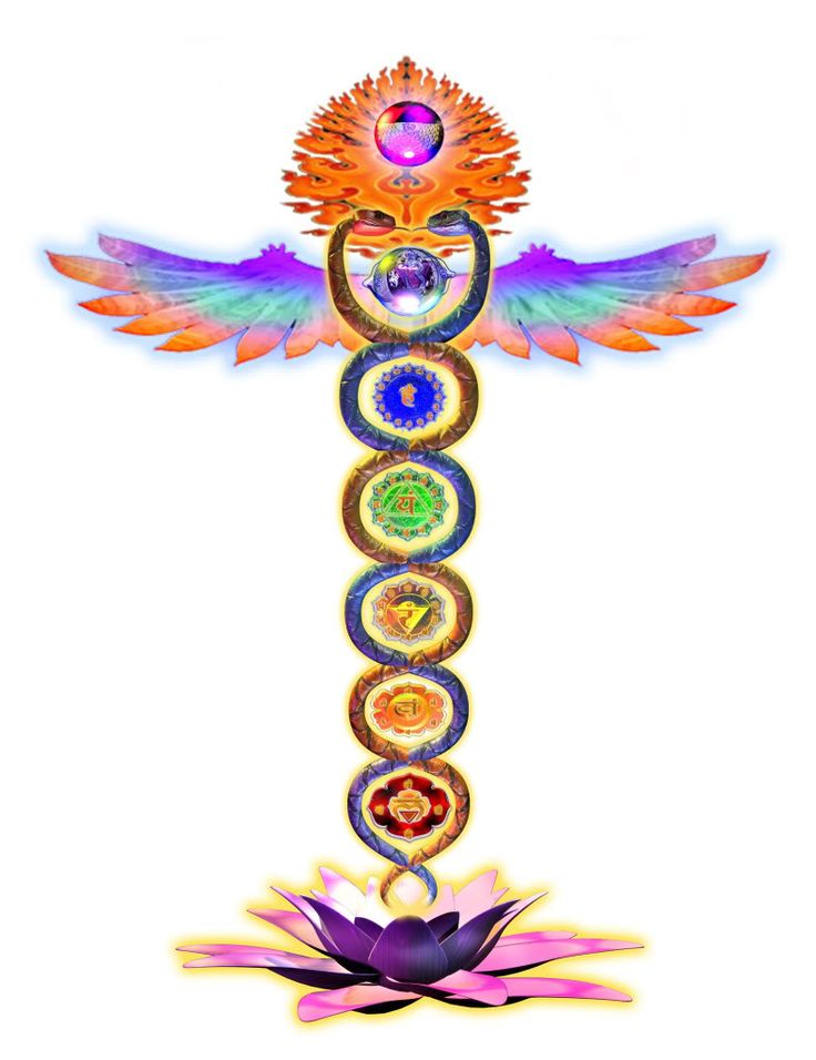 The healing snakes of the caduceus also look like the chakra system and the patterns of DNA.