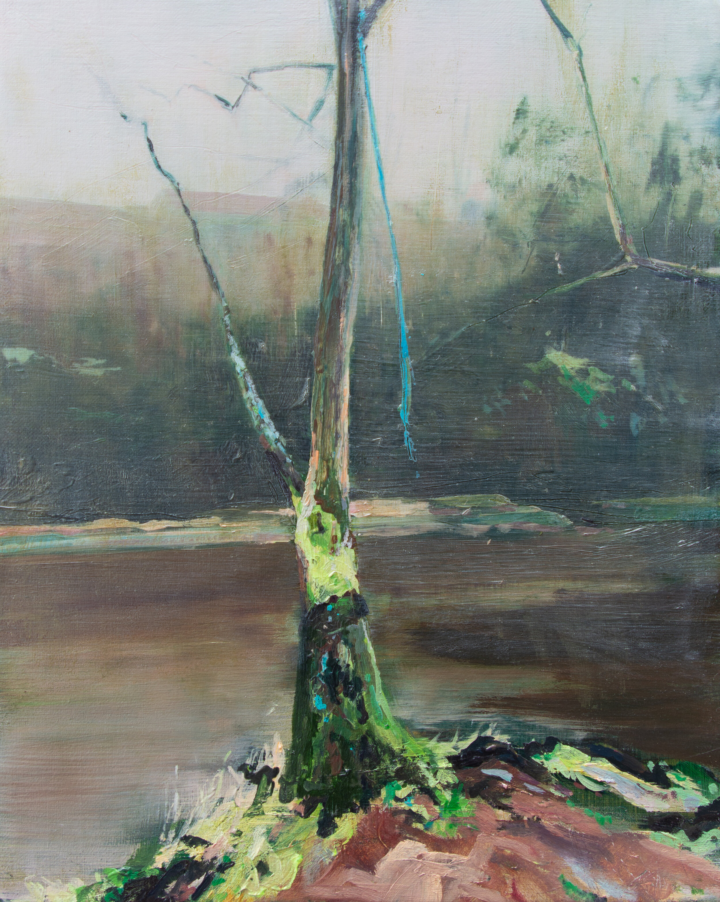 Untitled (Gallows Tree 1)