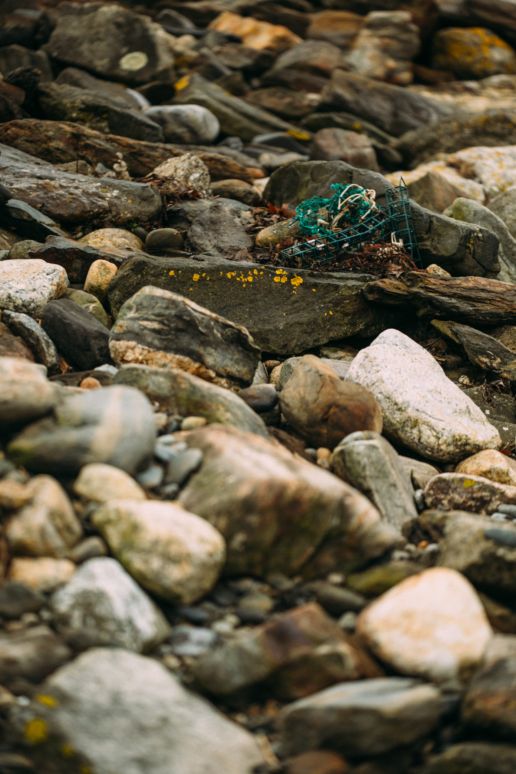 Maine Elopement Photography-3.jpg