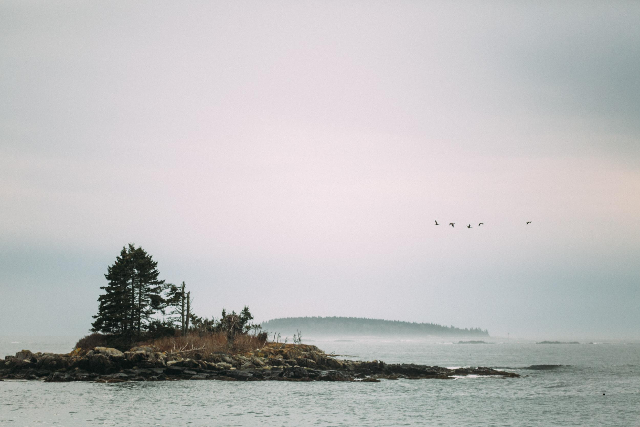 Maine Elopement Photography-6.jpg