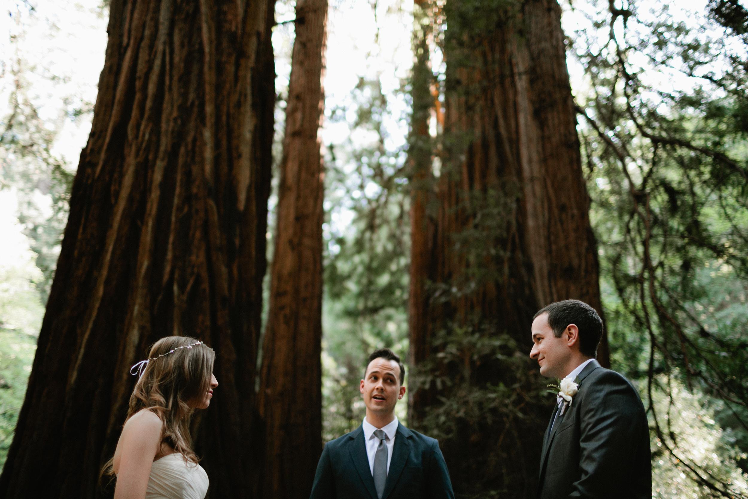 Muir Woods Wedding-14.jpg