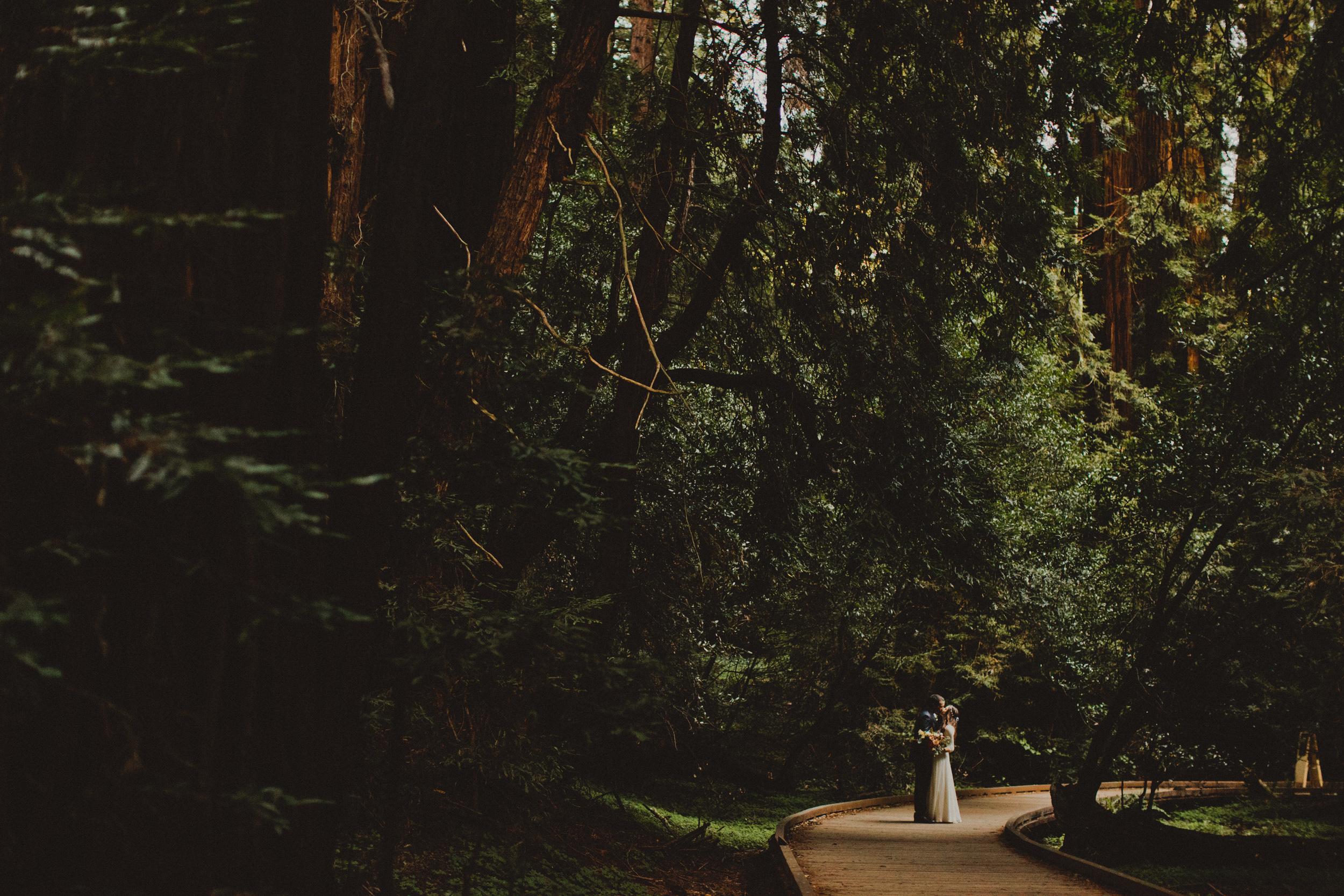 Muir Woods Wedding-46.jpg