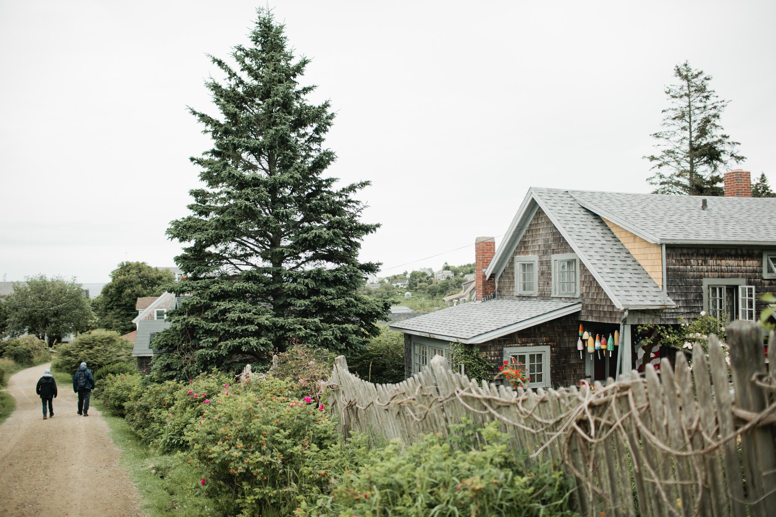 Monhegan-Island-Wedding-184.jpg
