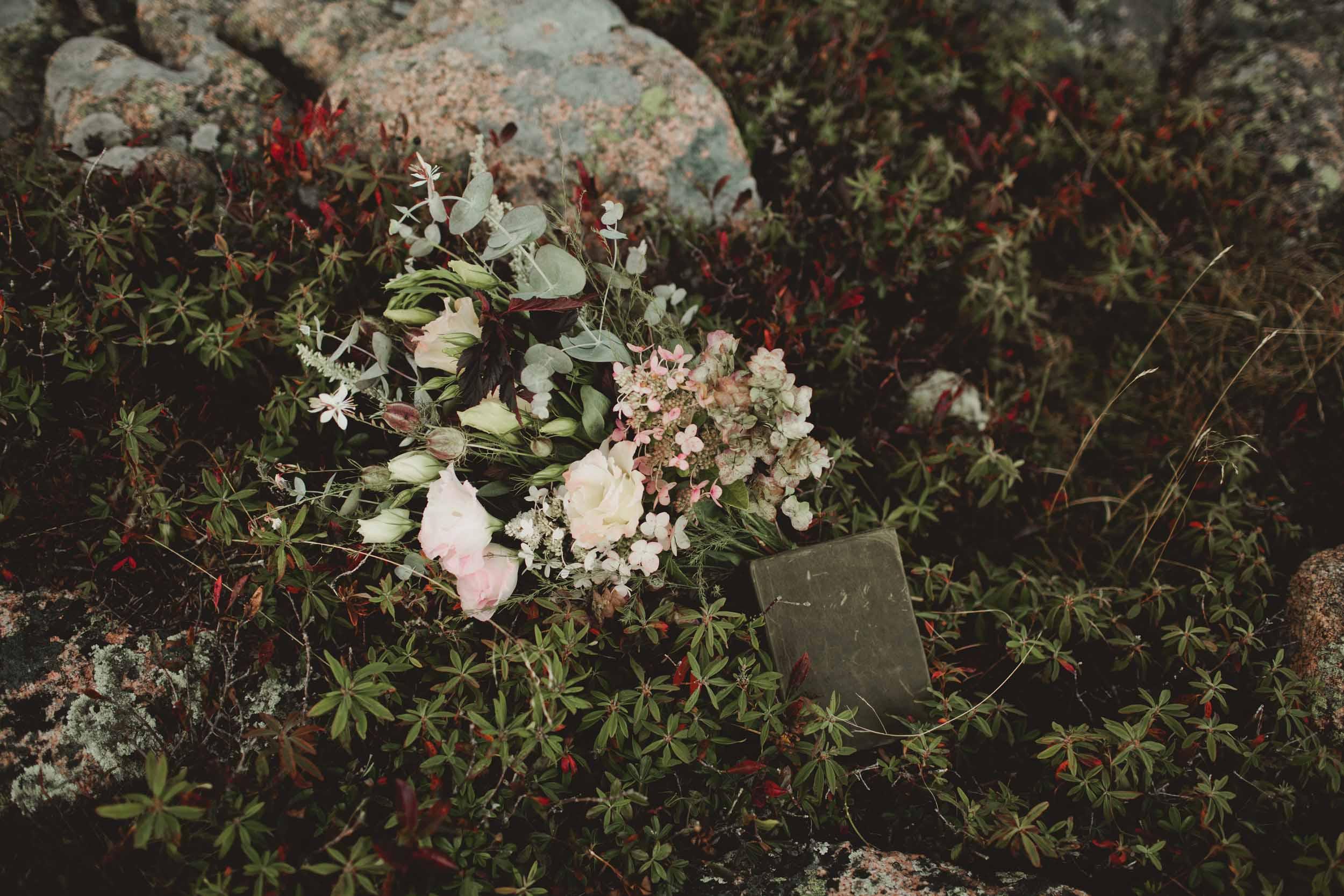 Maine-Elopement-Photographer3.jpg