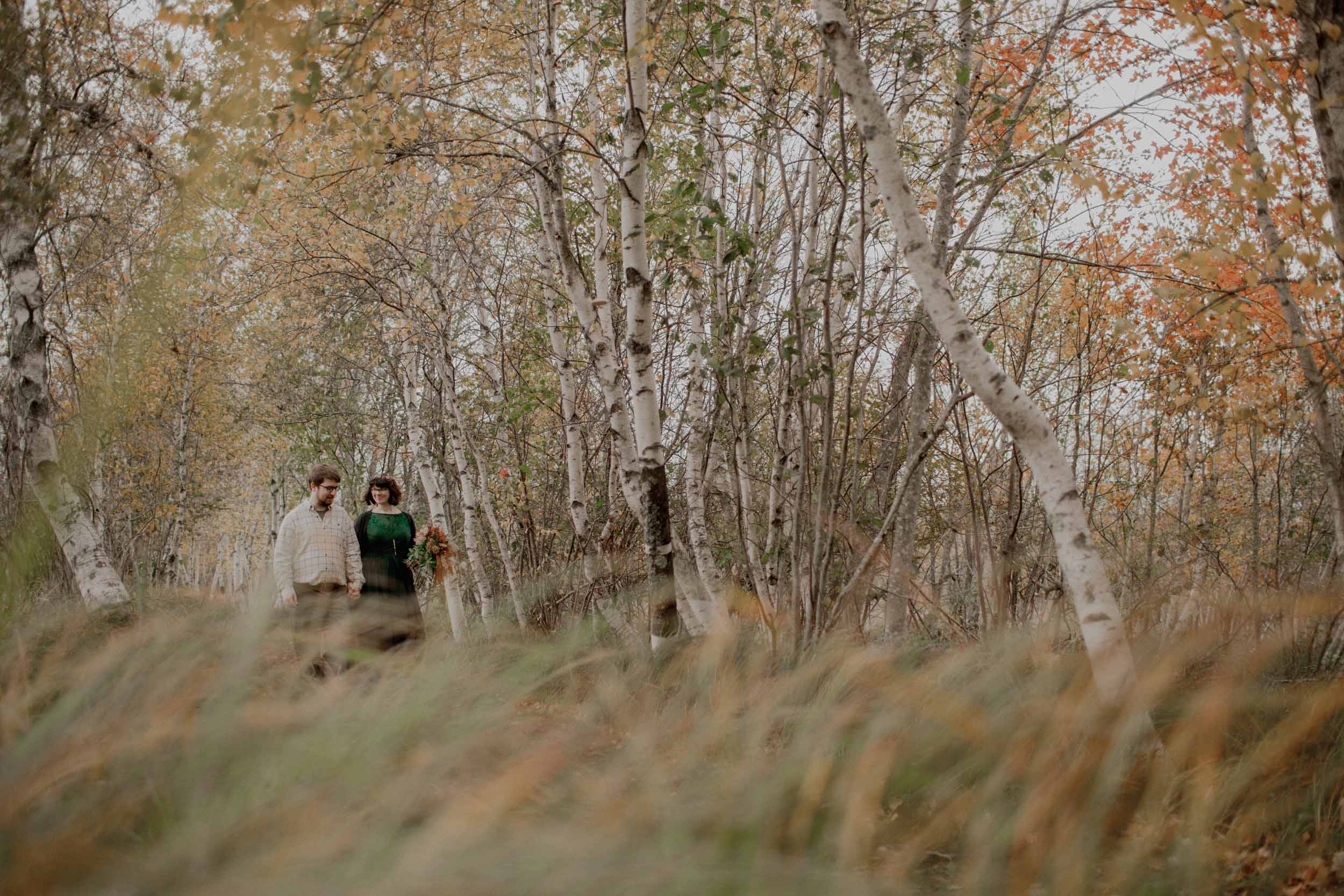 Acadia-Elopement12.jpg