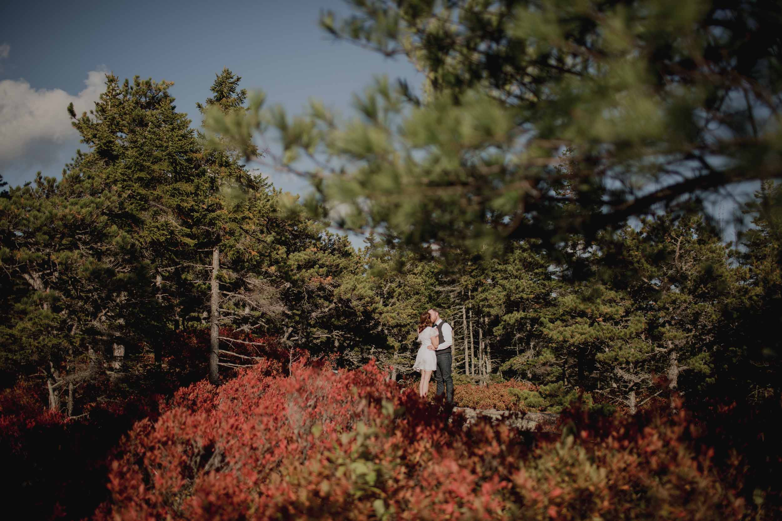 Acadia-National-Park-Elopement80.jpg