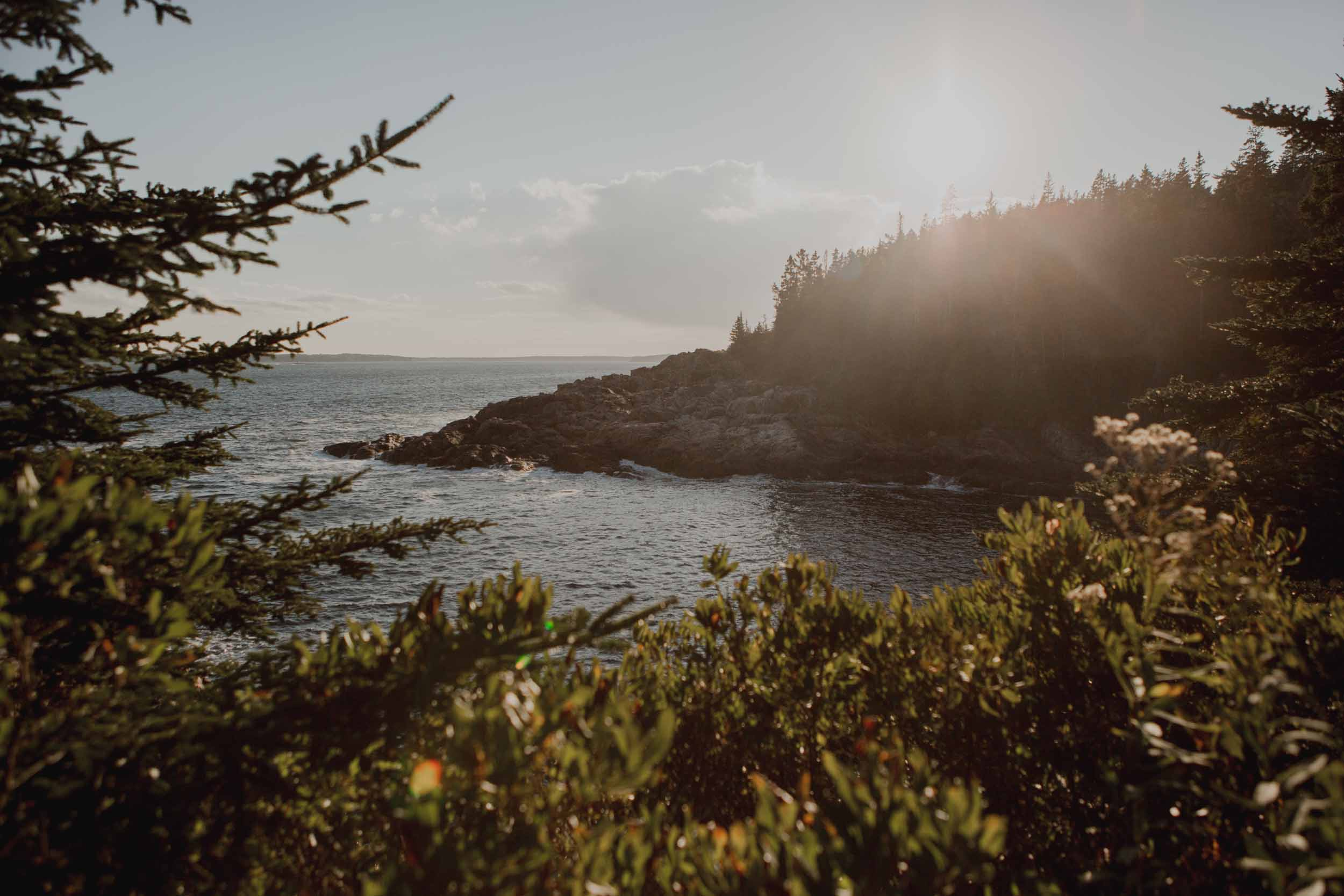 Acadia-National-Park-Elopement143.jpg