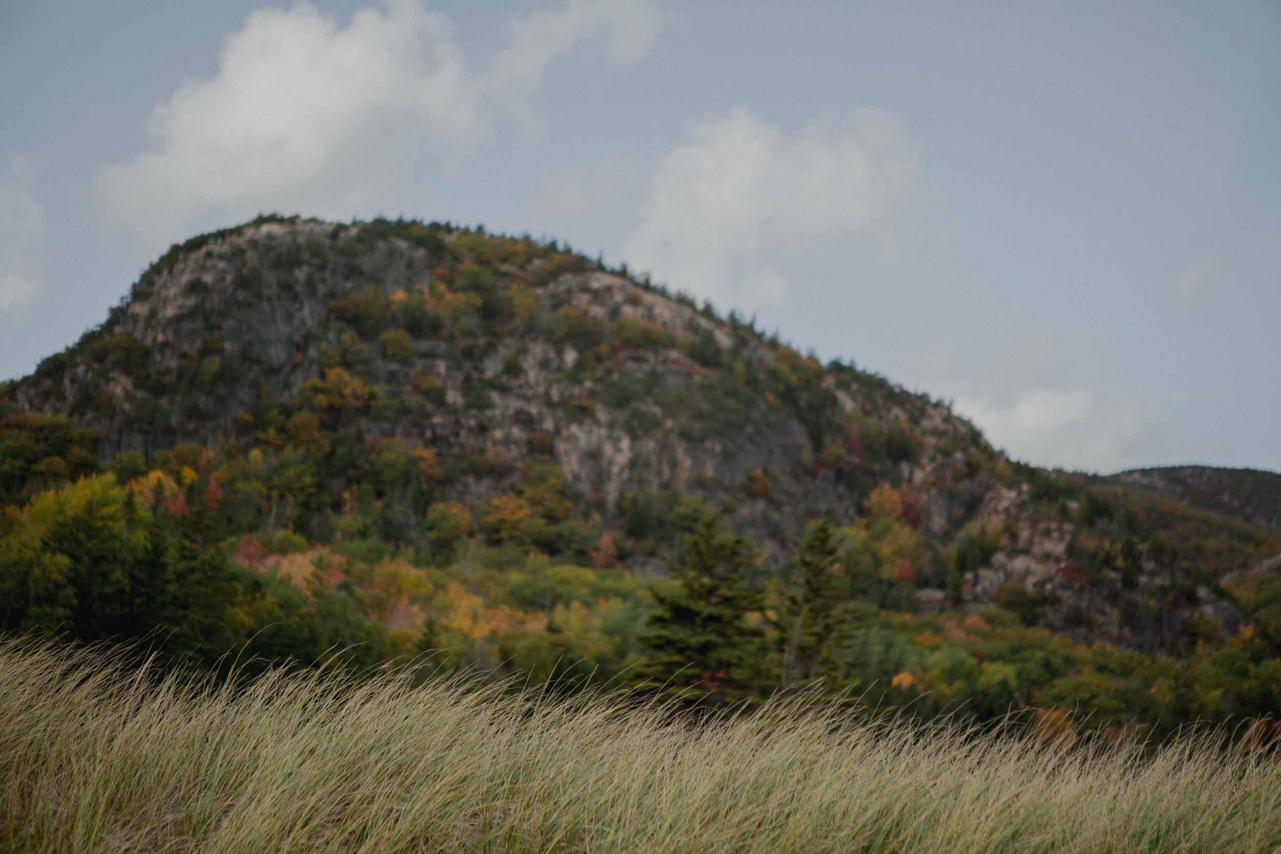 Acadia-National-Park-Elopement168.jpg