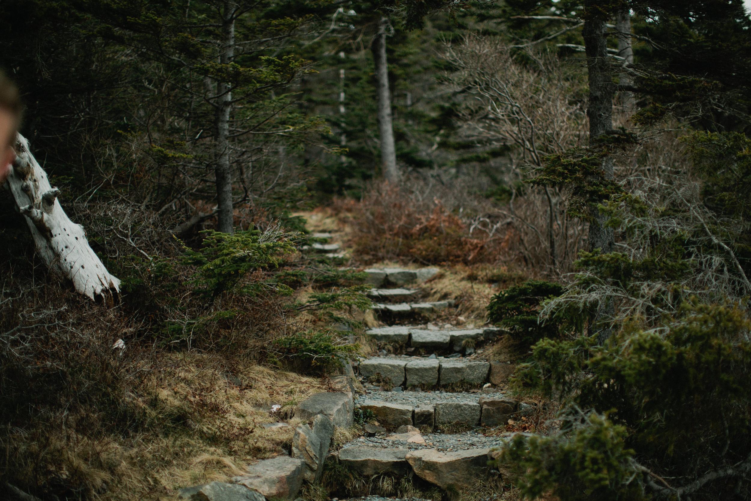 Acadia-Elopement-Photos-386.jpg