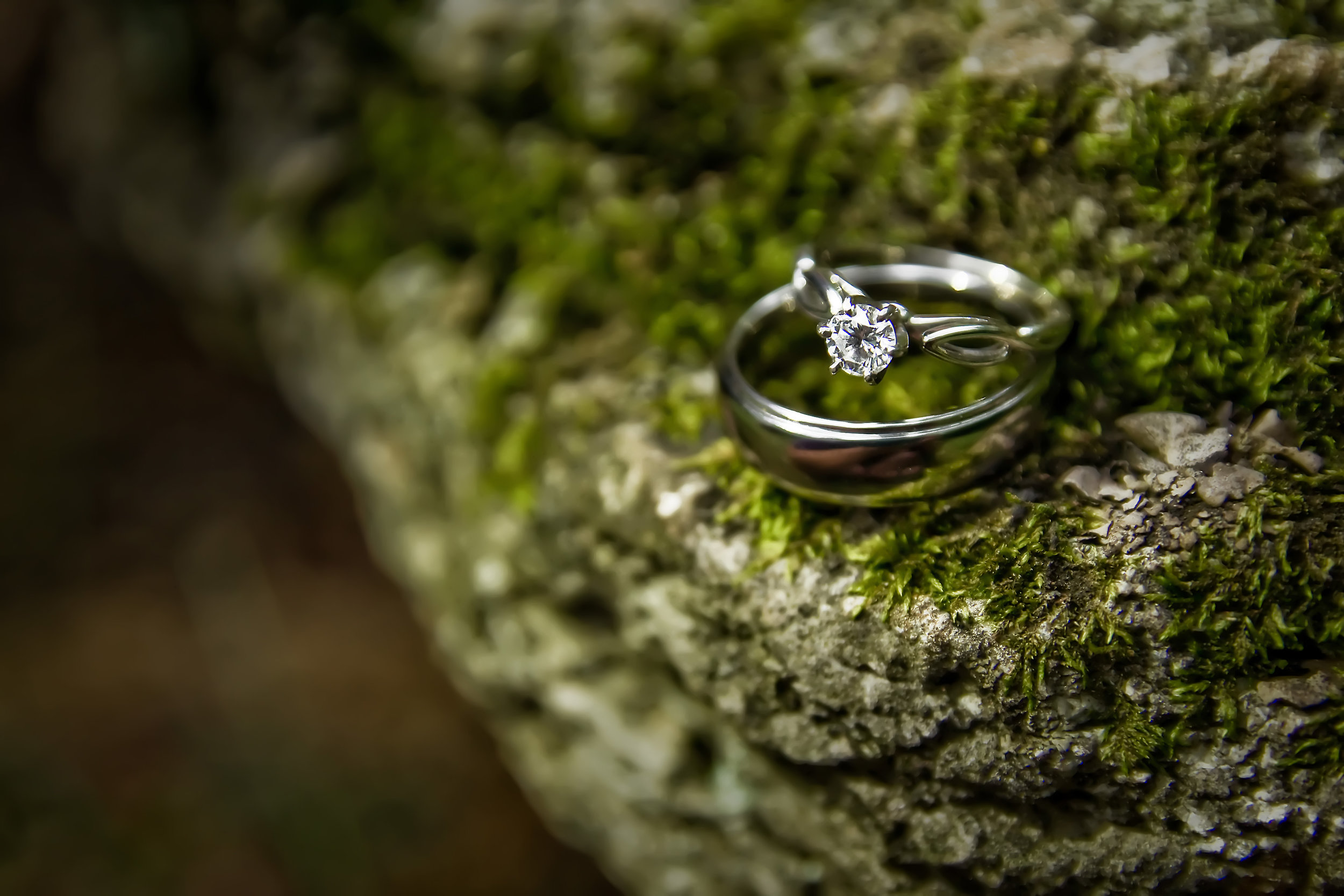 close up of wedding rings on mossy rock