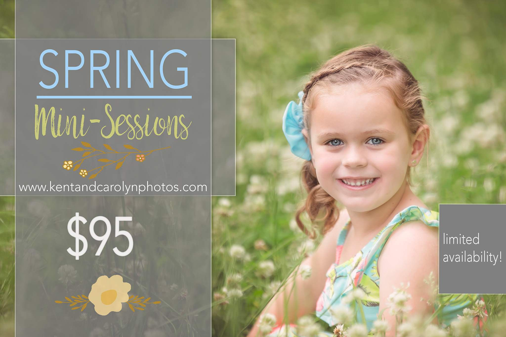 Spunky Bella poses in a field of clover during her Spring portrait session, Springfield Missouri.