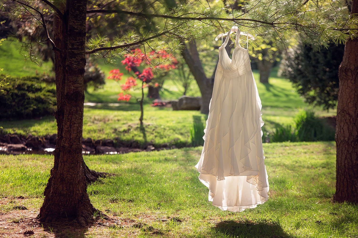 Wedding dress hangs in the golden sun at the Mizumoto Japanese Stroll Garden in Springfield, Missouri - a beautiful wedding venue for Spring!