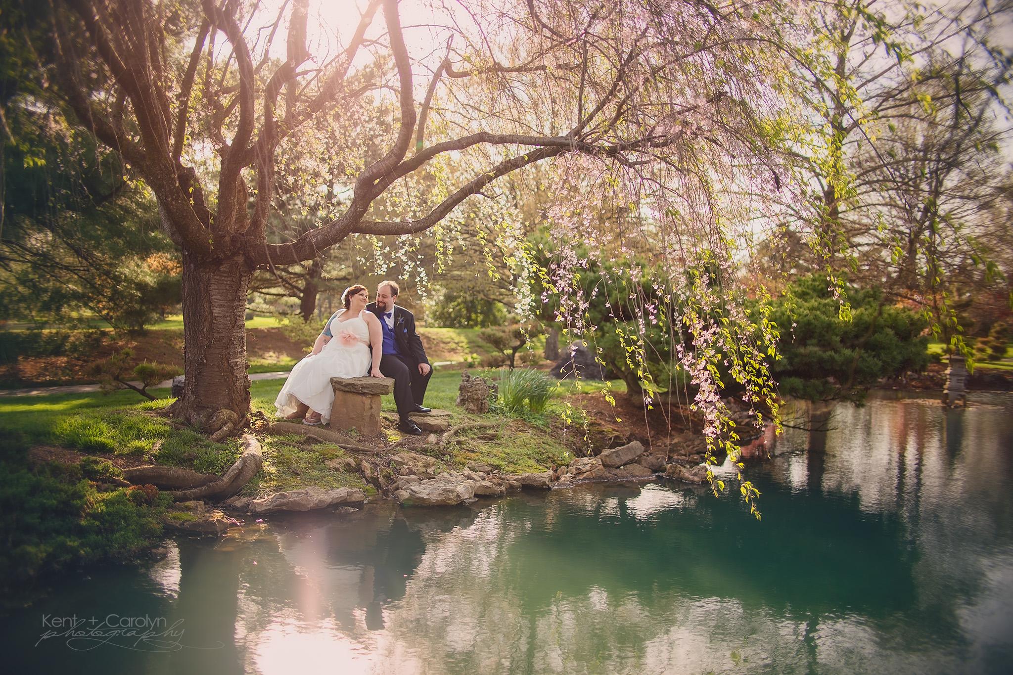 Spring wedding in the cherry blossoms at Mizumoto Japanese Stroll Garden, Springfield, MO