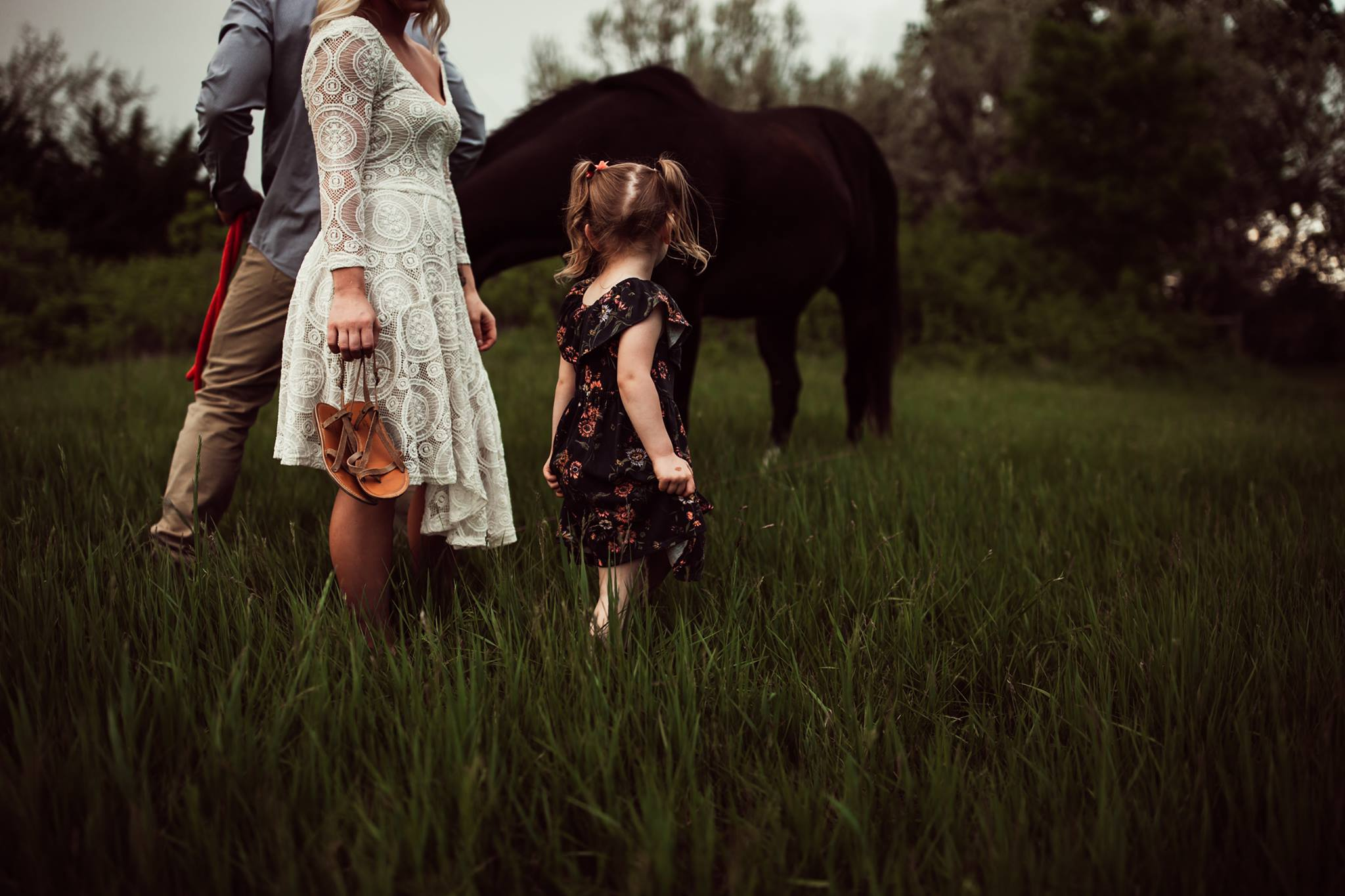 family posing made easy pose course for photographers by elena s blair   tiffany magnuson
