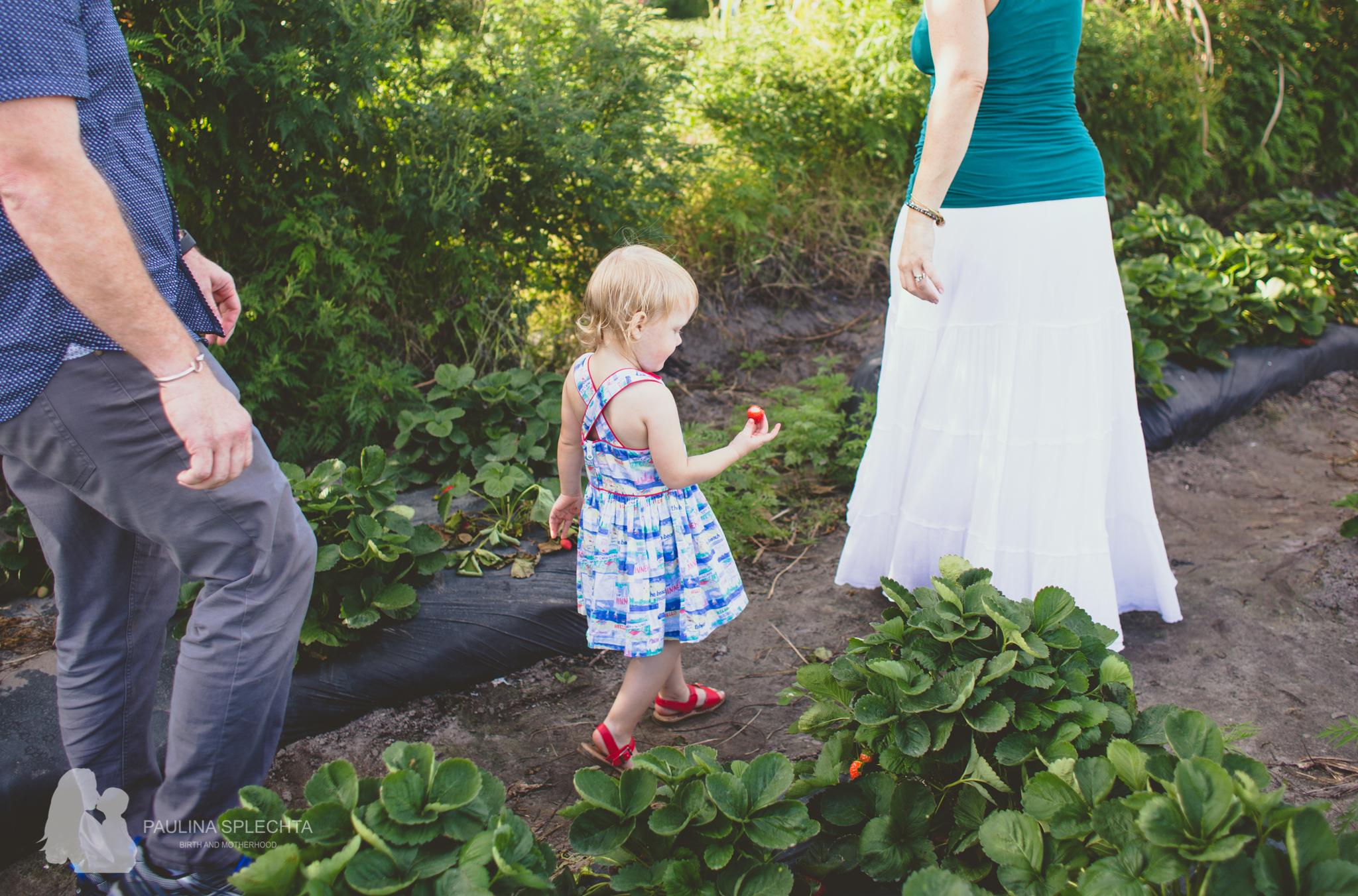 Family Photographer in Boca Raton-1.jpg